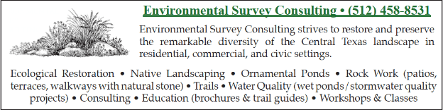 environmental survey consulting